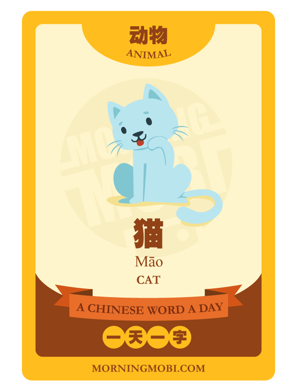A Chinese Word A Day Cat