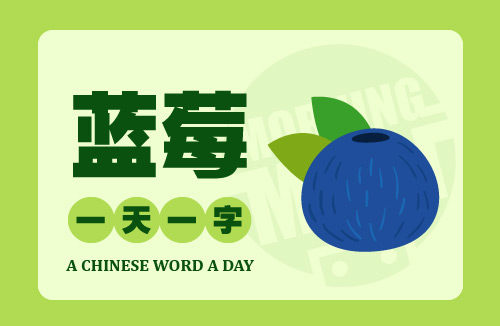 A Chinese Word A Day 蓝莓 Blueberry
