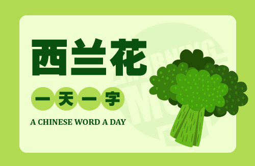 A Chinese Word A Day 西兰花 Broccoli