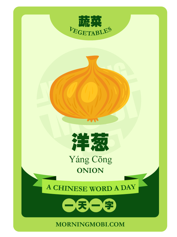 A Chinese Word A Day 洋葱 Onion