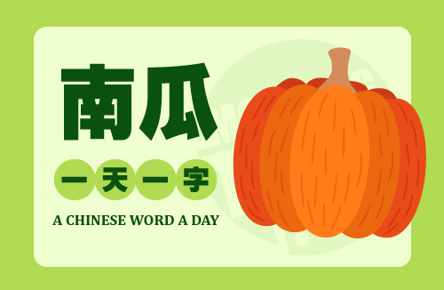 A Chinese Word A Day 南瓜 Pumpkin
