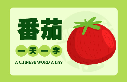 A Chinese Word A Day – 番茄 Tomato