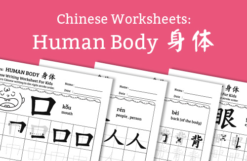 Chinese Worksheets For Kids: Human Body MorningMobi