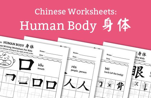 Chinese writing worksheet human body