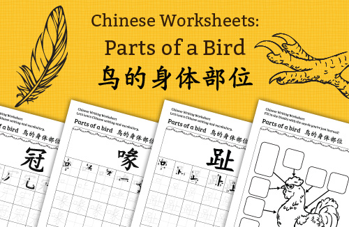 Chinese Worksheets: Parts of a Bird 鸟的身体部位